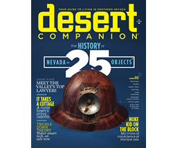 Valleys Top Lawyer Award to David J Winterton Desert Companion Magazine